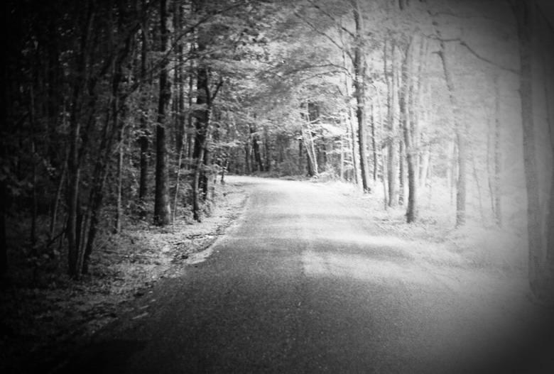 fletchertown-road-bowie