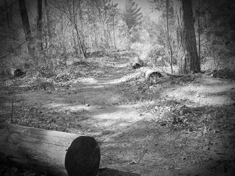 Boy Scout Lane, Stevens Point, Wisconsin