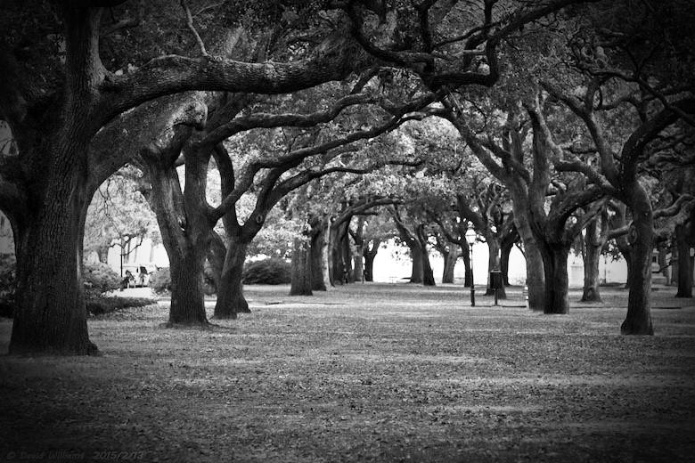 white-point-gardens-charleston