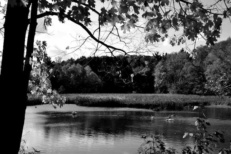 Durand-Eastman Park