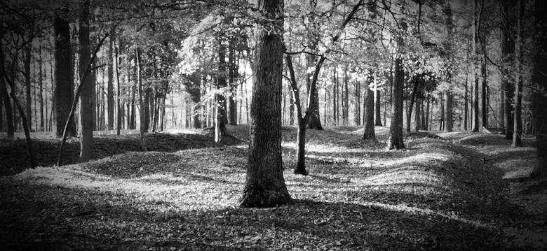 Cold Harbour Battlefield Park, Richmond